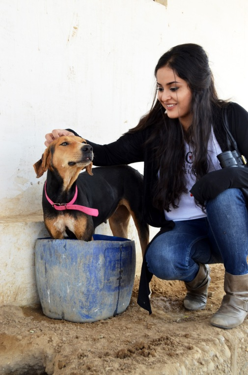 Ayesha Chundrigar with an ACF shelter dog